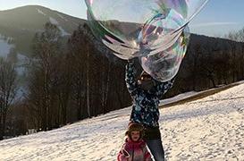 bubliny v zimě